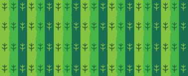 TenStickers. Sticker decorativo cornice foglie verdi. Adesivo murale che raffigura una cornice formata da una serie di foglie colorate con tre diverse tonalità di verde.