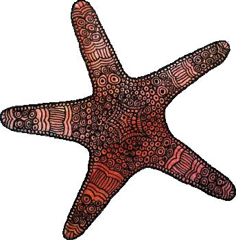 TenStickers. Wall sticker stella marina. Wall sticker decorativo che raffigura una stella marina. Disponibile in diverse dimensioni anche personalizzabili. Facile da applicare.