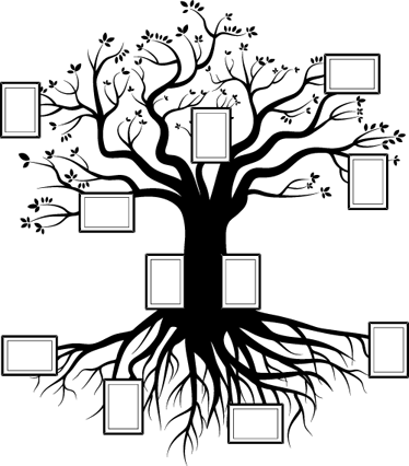 Vinilo decorativo árbol genealógico - TenVinilo