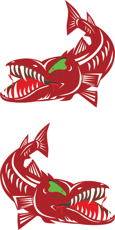 TenStickers. Hungry Barracuda Decal. Decals - Illustration of a hungry barracuda fish. Ideal for decorating your walls, appliances, devices, vehicle and more. Available in various sizes.