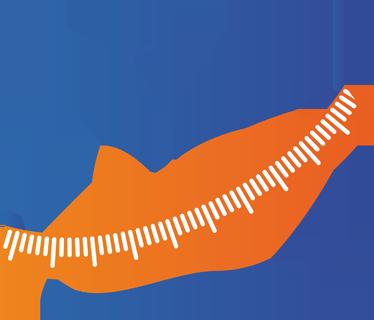 TenStickers. 健身苹果措施墙贴. 墙贴花-每天一个苹果使医生远离。卷尺包围的苹果的插图,表明饮食健康