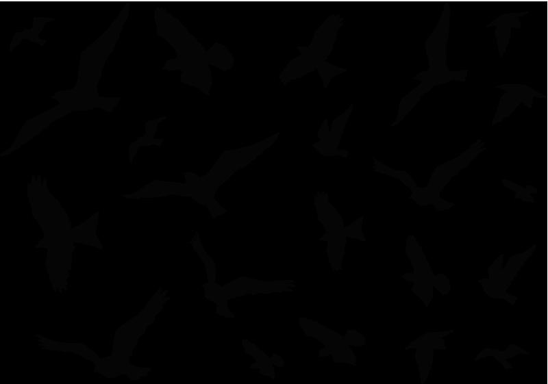 TenStickers. Autocolante decorativo de pássaros a voar. Decore as paredes da sua casa com estes autocolantes decorativos de pássaros a voar disponíveis numa enorme variedade de cores.