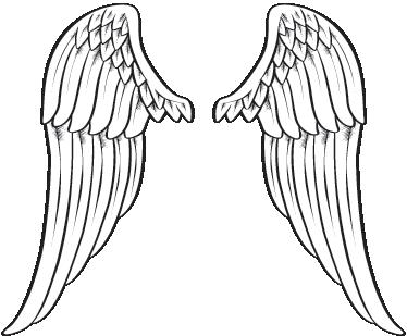 Spread angel wings wall art sticker tenstickers spread angel wings wall art sticker thecheapjerseys Images