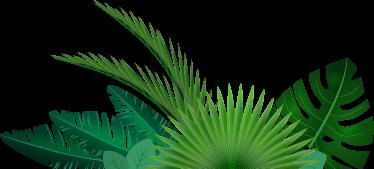 TenStickers. Naklejka tropilana roślinność. Tęsknisz za tropilanymi wakacjami? Twoje wnętrza potrzebują roślinnego elementu? Mamy dla Ciebie rozwiązanie.