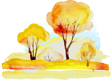 TenStickers. Watercolour Forest Wall Sticker. A bright and warm forest decal from our superb collection of forest wall stickers to decorate those empty spaces at home or work.