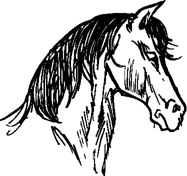 vinil decorativo desenho de cabeça de cavalo tenstickers