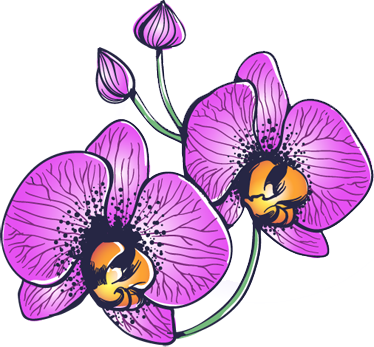 TenStickers. Orchid Flowers Decal. Two beautiful and bright orchid flowers, to bring some life and colour into any room in your home. Anti-bubble vinyl. High quality.