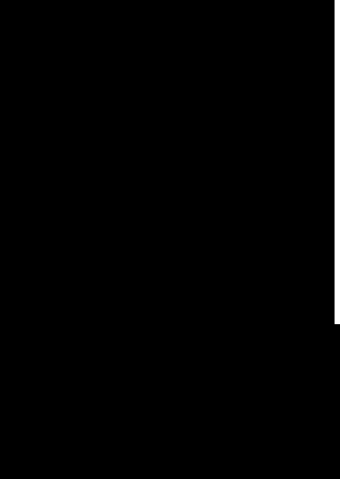 TenStickers. αυτοκόλλητο φυλών σαλαμάνδρα. διακοσμητικό αυτοκόλλητο σαλαμάνδρου που δημιουργήθηκε από διαφορετικά αφηρημένα σχήματα.