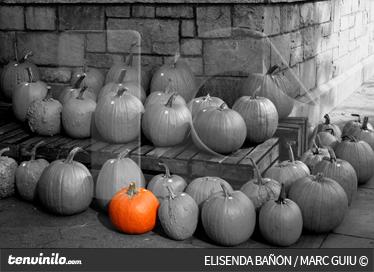 TenStickers. Photo murale contraste potiron. Photo murale adhésive en noir et blanc et contrastée par la couleur orange d'un potiron. Réalisé par un photographe professionnel.
