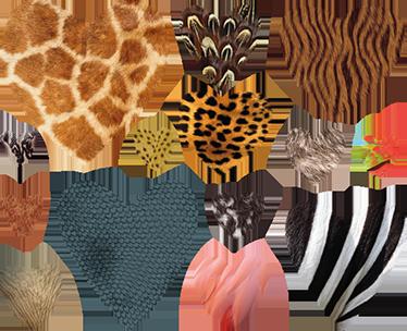 TenStickers. 동물 프린트 심장 스티커. 다른 동물 스킨으로 심장 벽 스티커의 컬렉션입니다. 동물에 대한 사랑을 보여주는 아주 독특한 벽 스티커.