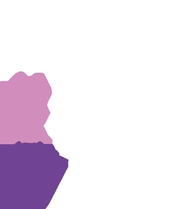 TenVinilo. Vinilo decorativo árbol aves y mariposas. Espectacular vinilo para decoración con el que podrás traer un trozo de bosque a cualquier estancia de tu casa.