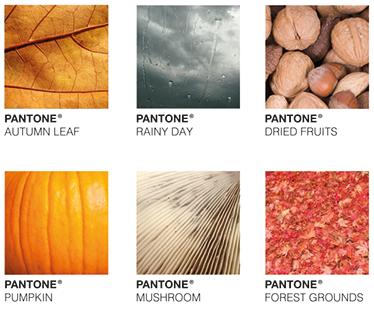 TenStickers. Wandsticker Herbst Pantone. Der Herbst ist da! Dekorieren Sie doch mit diesem modischen Wandaufkleber Ihr zu Hause.