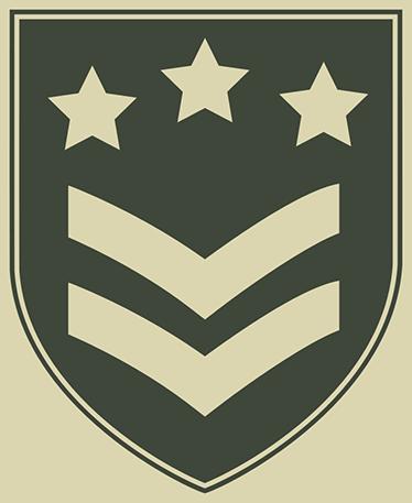 TenStickers. Adesivo emblema militare. Adesivi militari ideali per la decorazione di stanze di ragazzi. Sentiti un soldato con questi adesivi di tematica militare.