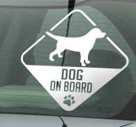 Dog on Board Car Sticker