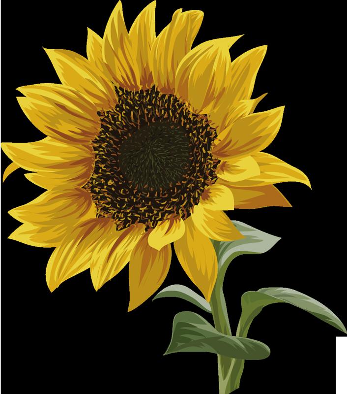 TenStickers. 美丽的向日葵t恤. 这款向日葵t恤以美丽鲜艳的色彩表达您对花朵的热爱。有了这件花t恤,您会惊叹您遇到的每个人。