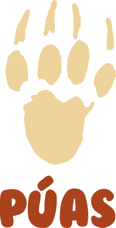 TenStickers. Porcupine footprint t-shirt. Custom name  t-shirt with a footprint designed with a footprints. You can purchase it in any name of choice. It is easy to maintain.