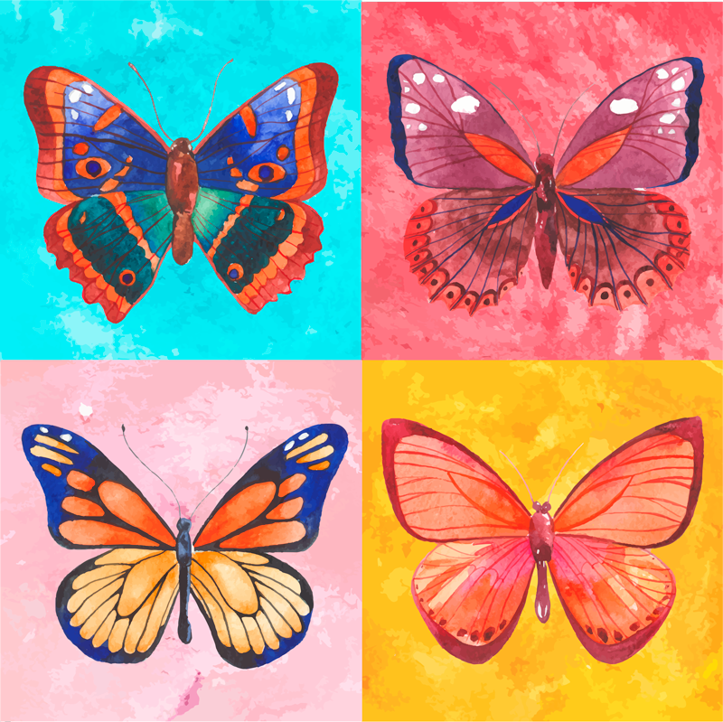 TenStickers. Multicolored Butterflies t-shirt. Original ladies t-shirt with colorful butterflies design in square background. Original and easy to wash and iron. Available in different sizes.