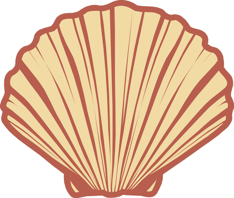 TenStickers. Simetric seashell T Shirt perfect. Even with our simetric sea shell shirt designs for shells you would be inspired by the quote of life.  order the original-leisure-t-shirt online.