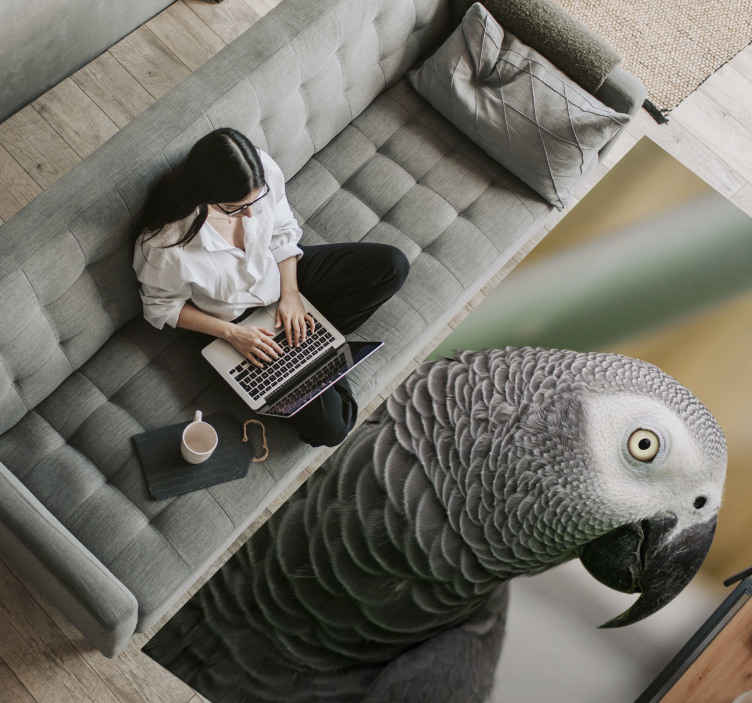 TenStickers. Grey parrot animal mat. Brighten your living room with this amazing grey parrot living room rug! Don't wait any longer, and order now your new grey parrot rug!