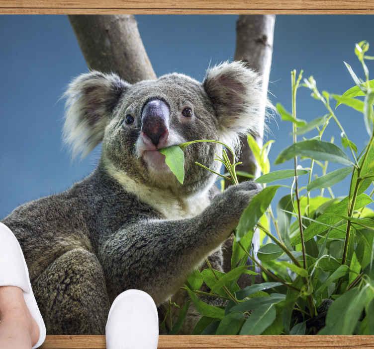 TenVinilo. Alfombra vinilo animales imagen koala. Increíble alfombra vinilo animales de imagen de oso koala para que decores tu casa con este diseño único ¡Elige tus medidas!