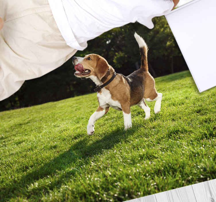 TenStickers. Animal cute walking dog vinyl rug. This particular design of an animal vinyl rug is a picture of a running puppy trying to reach for the clean, white laundry on a green grass. Must buy!