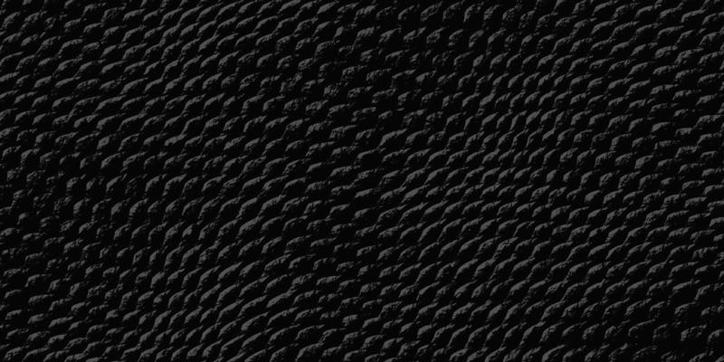 TenStickers. 黑蛇皮动物印花乙烯基地毯. 使用这种令人惊叹的黑蛇皮动物纹乙烯基地毯,为您的房子带来一个奇妙的元素,能够改善您的房间!
