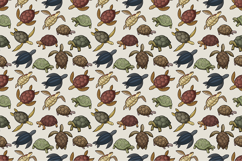 TenStickers. Variety of turtles animal vinyl carpet. Amazing animal vinyl rug with a pattern of a variety of turtles in different colors with a vintage touch that will look great in your bedroom.