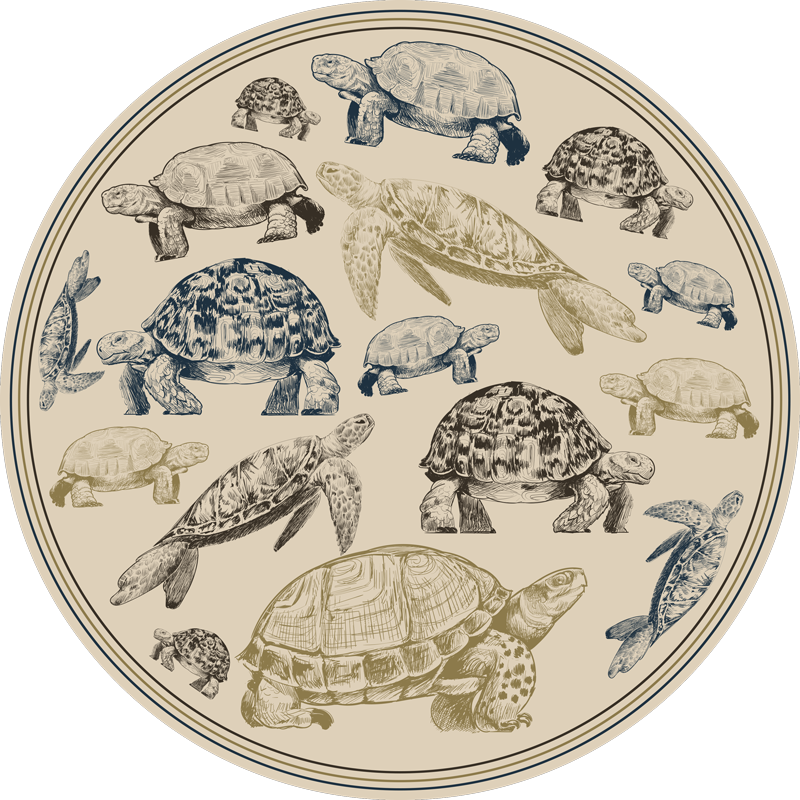 TenStickers. Turtles beige background animal vinyl carpet. Turtles beige background animal vinyl rug to decorate the floor space of your home.  It is easy to maintain, anti slippery and very durable.