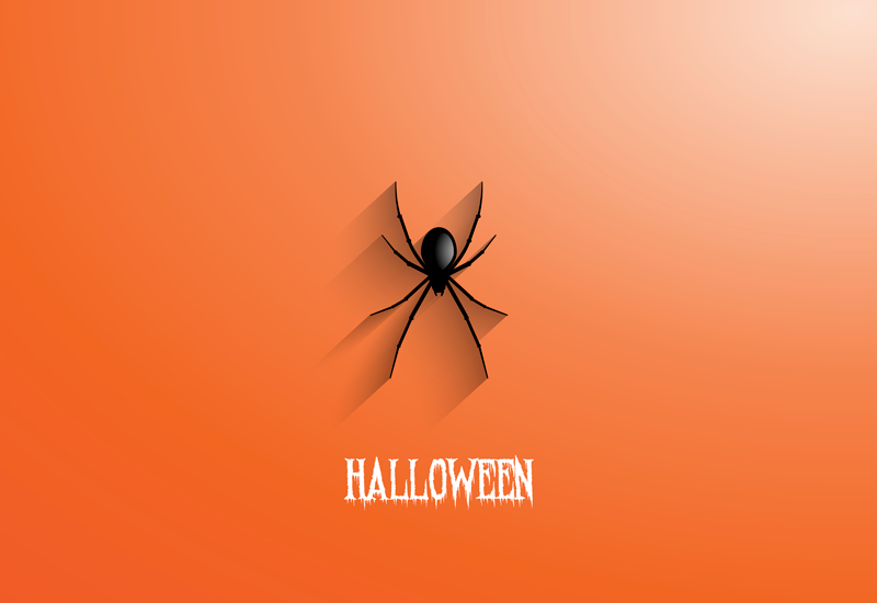 TenStickers. Spider Halloween hall vinyl rug. An ideal rectangular orange background vinyl rug with spider and Halloween text in a terror style. It is easy to maintain.