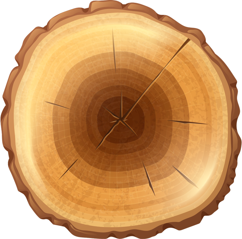 TenStickers. Round tree wood vinyl rug. Wood texture round vinyl rug suitable for any space. This design is made in the texture of an inner wood bark. Easy to maintain and of high quality.