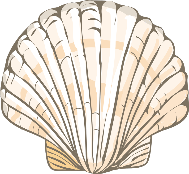 TenStickers. Big seashell animal mat. An original big seashell vinyl carpet with the shape of a seashell to give your house an original style. Delivery to the front of your door!