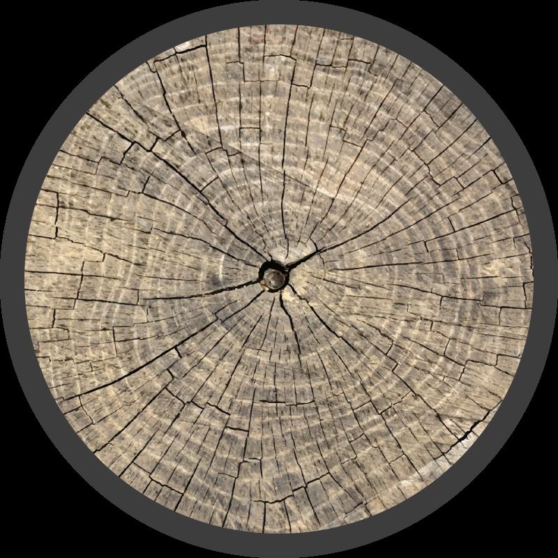 TenStickers. Dywan winylowy Pień dużego drzewa. Dywan winylowy o drewnianej fakturze, idealna dekoracja do kuchni lub sypialni. Wykonane z wysokiej jakości winylu, bardzo odporne i łatwe do przechowywania.