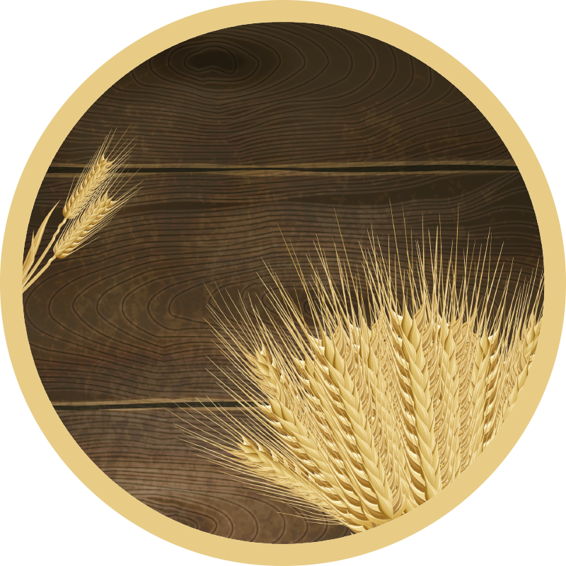 TenVinilo. Alfombra vinílica redonda trigo dibujado. Alfombra de vinilo para salón o comedor que presenta un fondo de madera con algo de trigo en primer plano. Elige medidas ¡Envío express!
