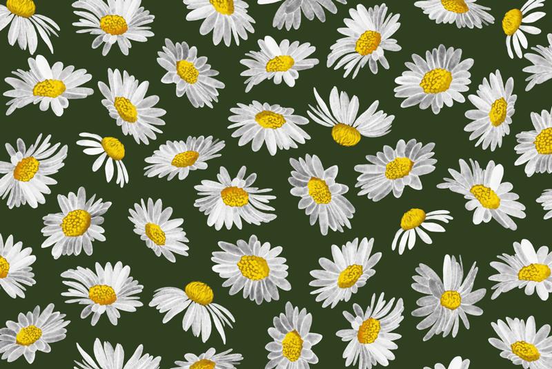 TenStickers. 雏菊花地毯领域. 梦幻般的花朵图案绿色和白色和黄色。通过这种设计,您可以拥有完美适合您家中的装饰。