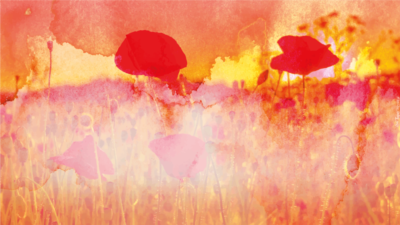 TenStickers. Dywan winylowy Czerwona farba. Prostokątny dywan winylowy w kolorze czerwonym. Dywan ma teksturę wzoru przedstawiającą malowane pole maków o zachodzie słońca.