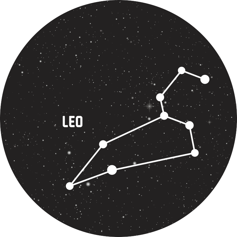 TenStickers. Zodie covoare leo contemporane. Covor minunat și elegant semn zodiacal leo vinil perfect pentru a pune într-un salon din casa ta. Dacă sunteți în căutarea unui decor drăguț pentru casa dvs.