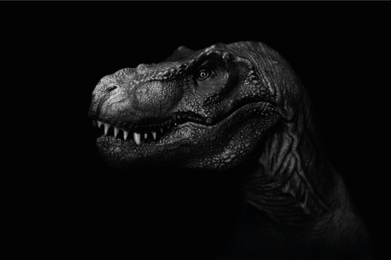 TenVinilo. Alfombra vinilo animales T-Rex realista. Alfombra vinilo animales con T-Rex realista para que decores tu salón, el cuarto de tus hijos o el tuyo con este impresionante diseño