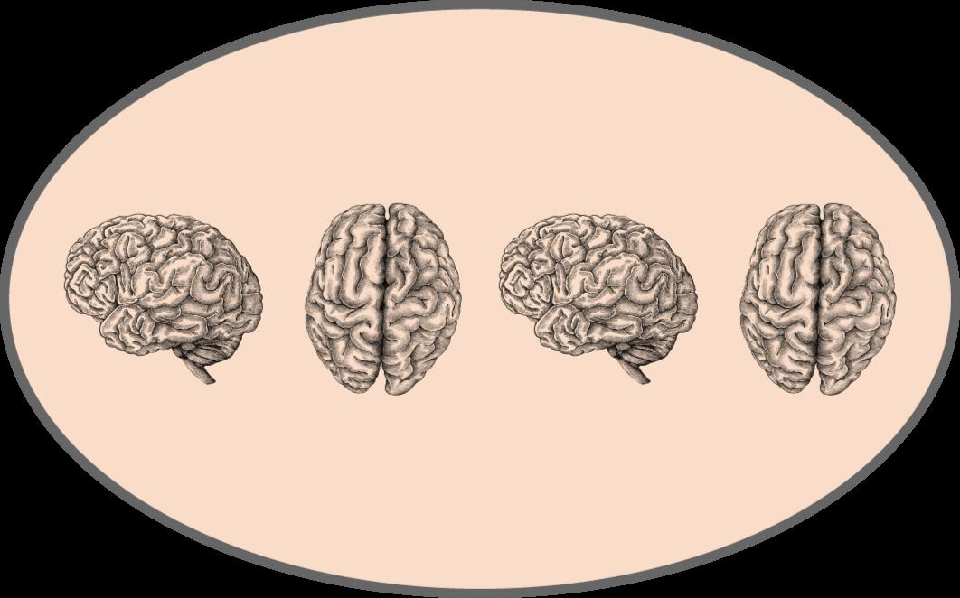 TenVinilo. Alfombra vinilo vintage lados del cerebro. ¡Una alfombra vinilo vintage de cerebros que se verá increíble en tu hogar! Material extremadamente duradero y de fácil mantenimiento.
