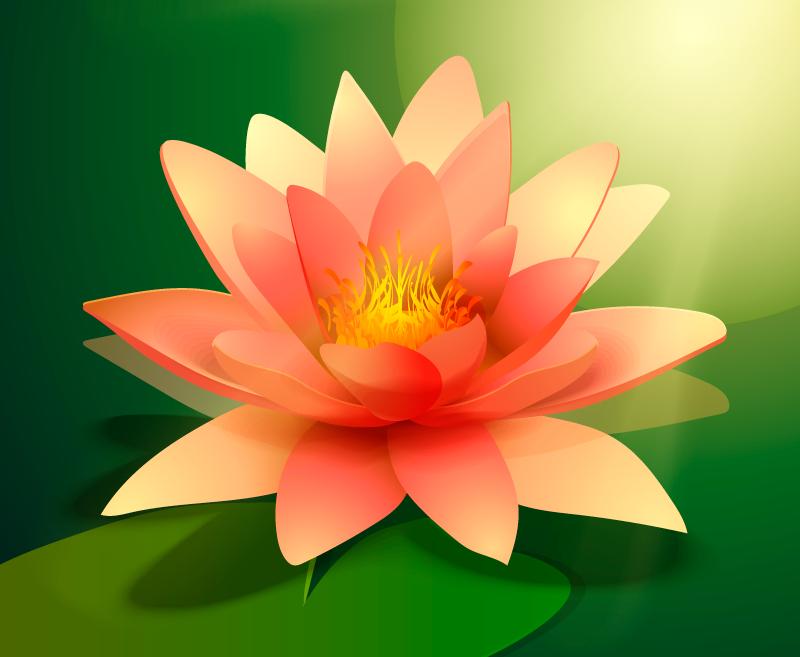 TenVinilo. Alfombra vinilo flor loto con sombra. Alfombra vinílica floral de loto rosa realista adecuada para cualquier parte de una casa. Es fácil de limpiar, lavar, barrer y fregar sin problema.