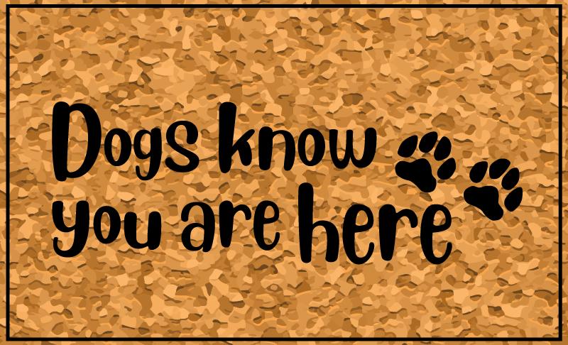 """TenStickers. Cachorros sabem que você está aqui tapetes de vinil. Tapete do vinil do cão que t caracteriza o texto """"cães sabem que você está aqui"""" com uma imagem bonito dos pawprints ao lado dele. +10. 000 clientes satisfeitos."""