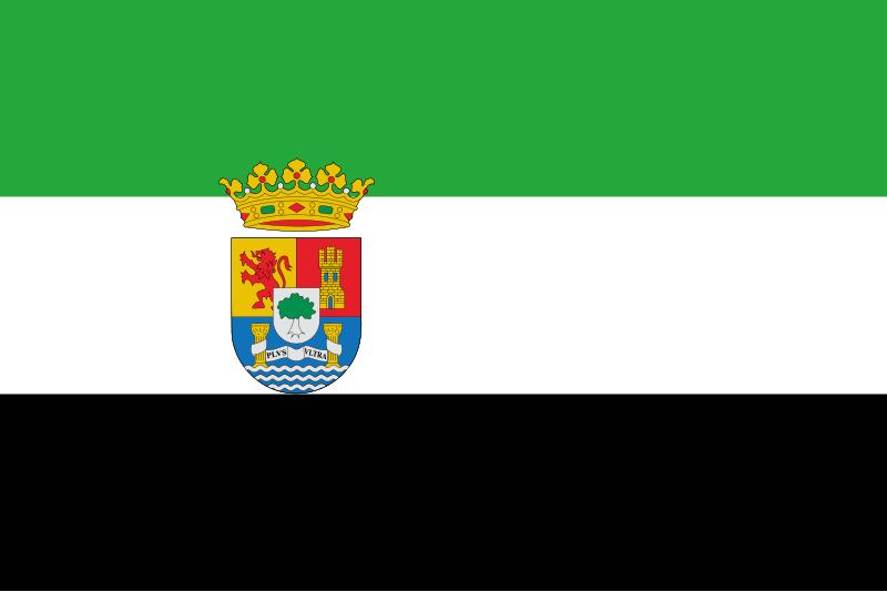 TenVinilo. Alfombra vinilo rayas bandera Extremadura. Alfombra vinilo rayas de bandera de Extremadura para salón, oficina, tienda, dormitorio, etc. Precioso diseño para que muestres tu orgullo extremeño