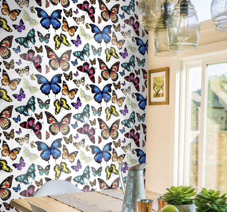 TenStickers. 美丽多彩的蝴蝶餐厅壁纸. 美丽而又丰富多彩的蝴蝶壁纸。这种设计印有高质量的图形,使其看起来逼真。