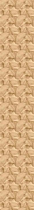 TenStickers. Vintage tengeri kagylókból kagyló háttérkép. Gyönyörű vintage háttérkép textúra megjelenéssel, utánozva a pack pf tengeri kagylókat a tengerparton. Könnyen alkalmazható és kiváló minőségű.