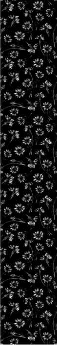 TenStickers. Carta da parati a fiori Fiore bianco su sfondo scuro. Carta da parati decorativa lenitiva con motivi floreali bianchi su sfondo nero. Un design di carta da parati per presentare un'atmosfera accogliente nella tua casa.