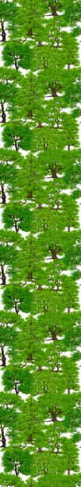 TenStickers. Padure verde cu tapet copaci palmier tapet. Un design uimitor al tapetului dormitorului de dormitor al pădurii de copaci verzi. Un design pentru a oferi o gură de prospețime a copacilor verzi din casa ta.